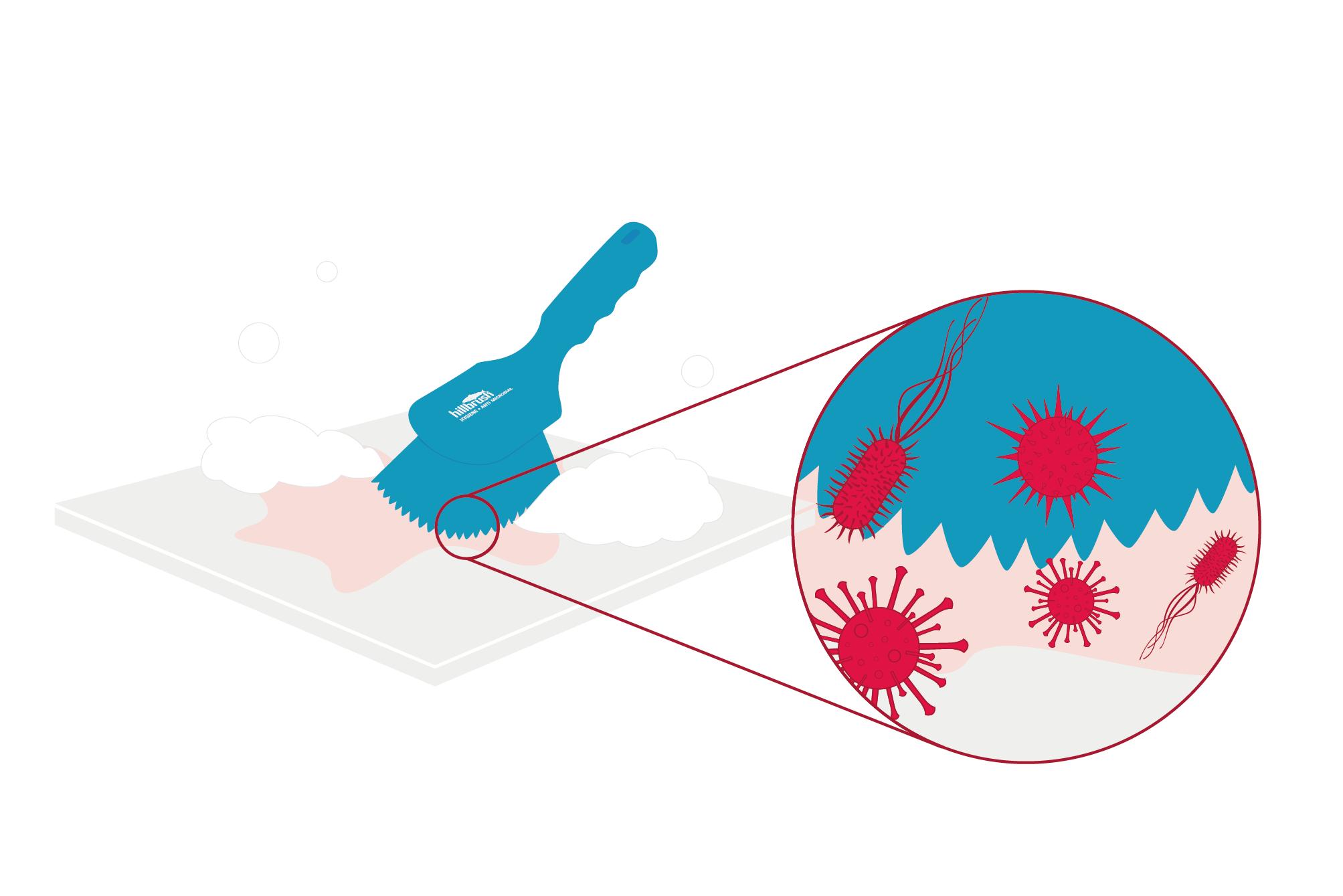 cross contamination diagram